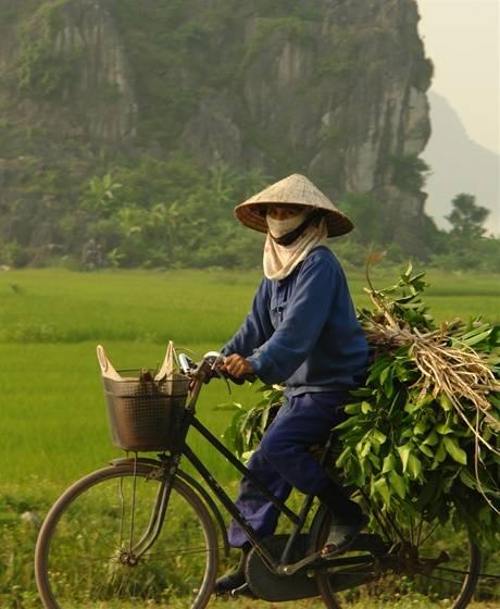 Veelzijdig Vietnam 30 Dagen Hss Azi 235 Reizen